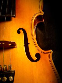 | violin | | by arquera