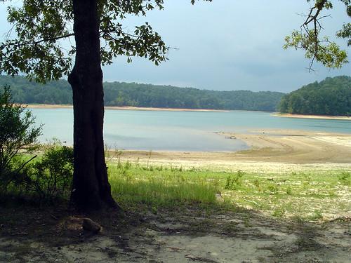 blue trees lake water alabama fallcity smithlake