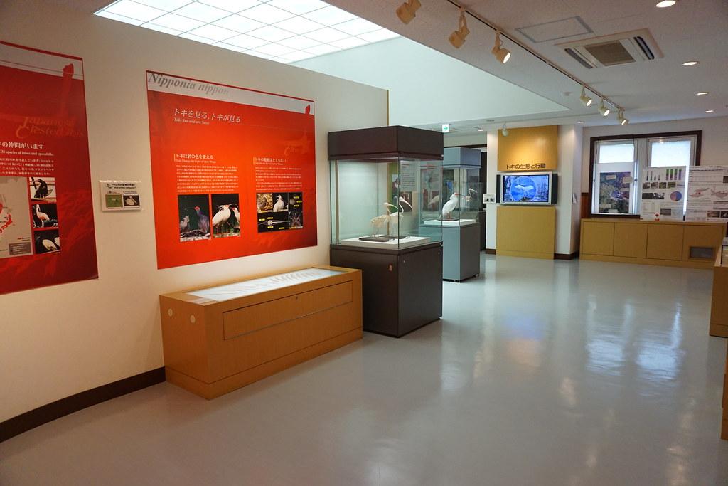 トキ展示資料館