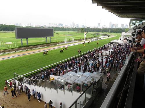 タイの競馬場のスタンドの最前列