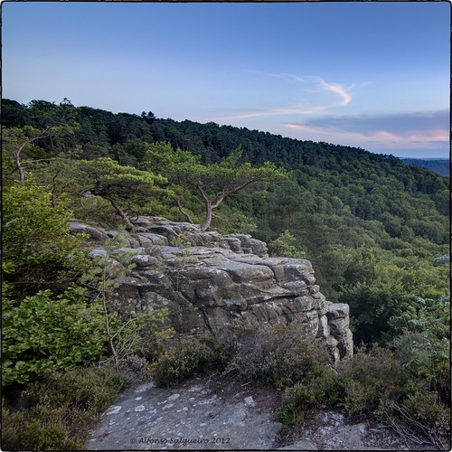forest dusk climbing luxembourg mullerthal berdorf
