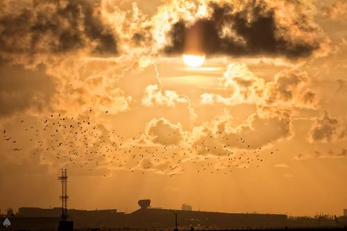 sky clouds sunrise landscape airport florida miami mia 2012 kmia