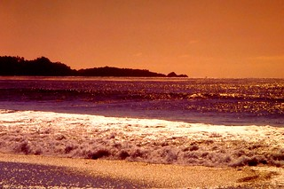 Sunset at point lobos reservation south of carmel, california