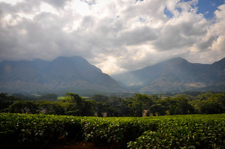 Mt. Mulanje | by skuarua