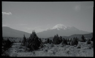 Mt Shasta | by Ned Lewis