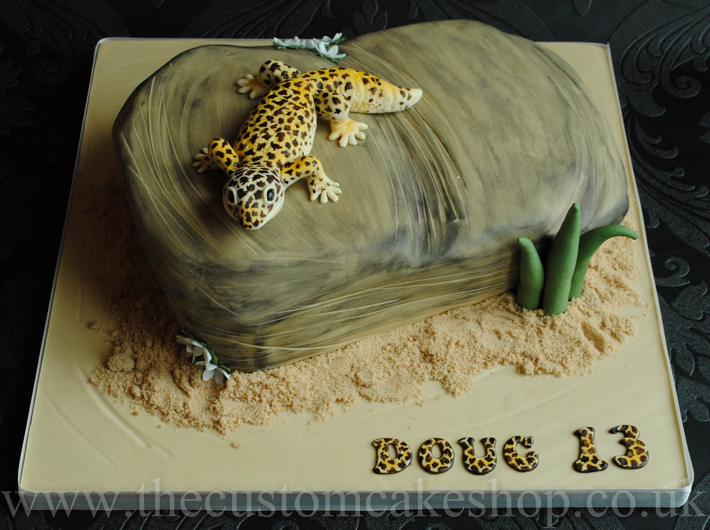 Tremendous Leopard Gecko Birthday Cake A 13Th Birthday Cake With Hand Flickr Funny Birthday Cards Online Aeocydamsfinfo
