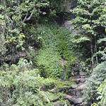 Lucia en el Norte de Tailandia, Viajefilos 070