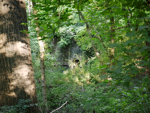 overgrown structure | by Keithius