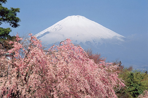 Fuji japan | by Travelbusy.com