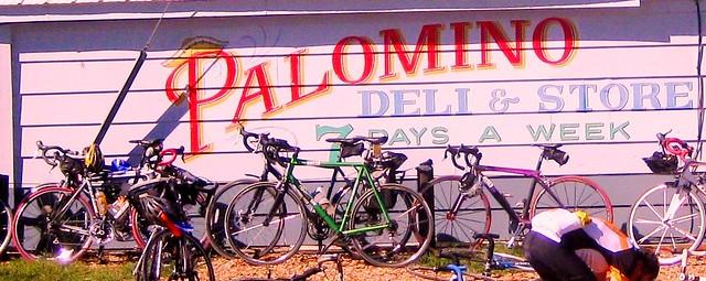 39) Palmino Rest