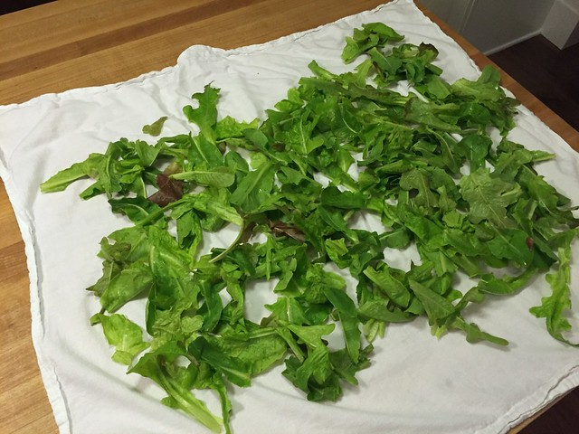 drying lettuce with a lint-free towel