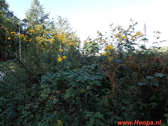 2016-09-21           3e Bos & Heide tocht Ede  25 Km   (27)