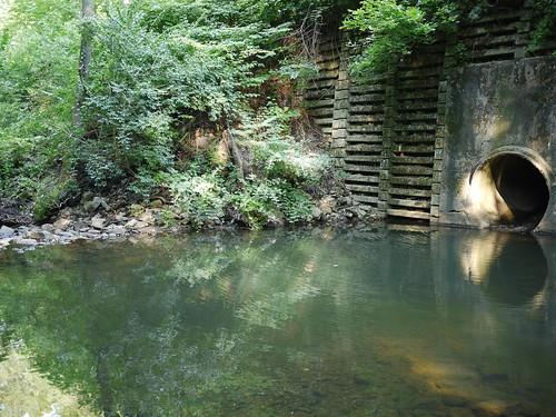 drain pool   by Keithius