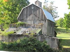 Abandoned Brookfield_20120919_0006