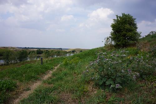 Stige-Oe-Vestudsigt-2014-07-27 (1)