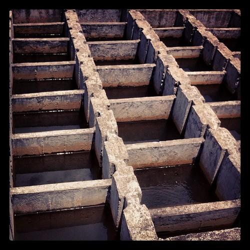 square squareformat sutro iphoneography instagramapp uploaded:by=instagram foursquare:venue=4f37edaee4b0e313d409ba4c