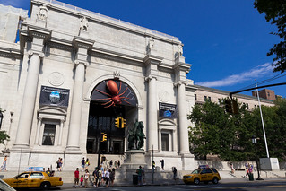 American Museum of Natural History (Manhattan, New York, USA) | by t-mizo