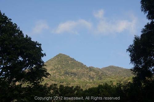 plantation boquete panama chiriqui