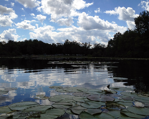 lake clouds day cloudy pennsylvania cumulus aquatic iphone frenchcreekstatepark cocoabiscuit hopewelllake