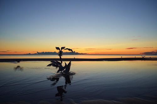 morning sun seagulls lake ontario canada beach water burlington sunrise reflections nikon bfg d5100 blinkagain bestofblinkwinners