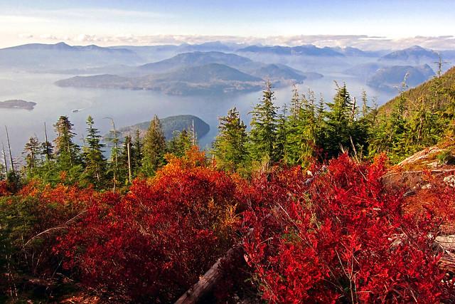 Sunshine Coast - Autumn Aerial II