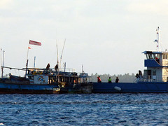 di, 31/07/2012 - 13:59 - 022. Vluchtelingen worden overgebracht naar een asielzoekerscentrum