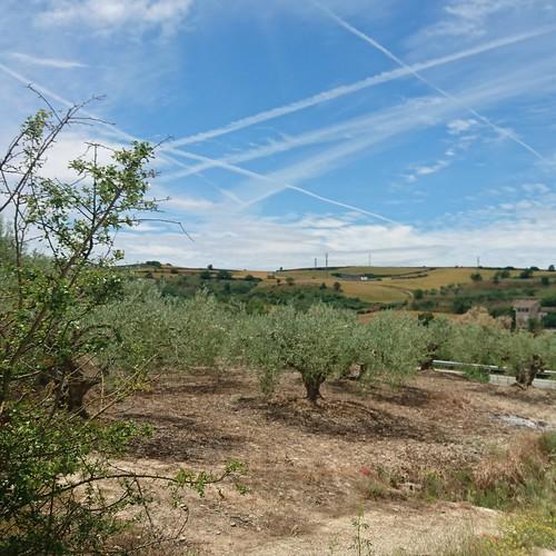 Camino de Santiago, Spain | by anywhereism
