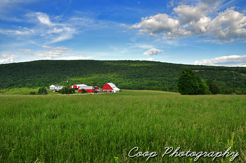 city red green field june clouds barn forest photography amazing nikon day dale pennsylvania union north puff 15 center east pa coop 2012 northeastern herrick d90