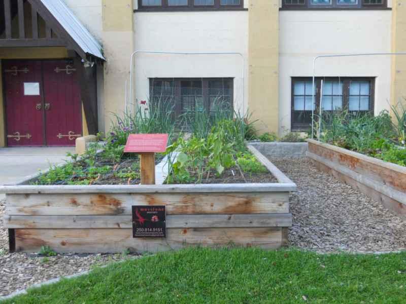 Community Garden Revelstoke Canada 17