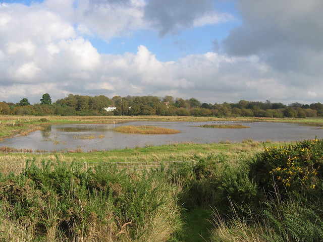 Hook with Warsash Nature Reserve