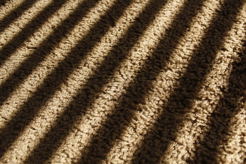 county sun yellow landscape carpet photography riverside lewis blinds antoine marquis menifee inlandempire