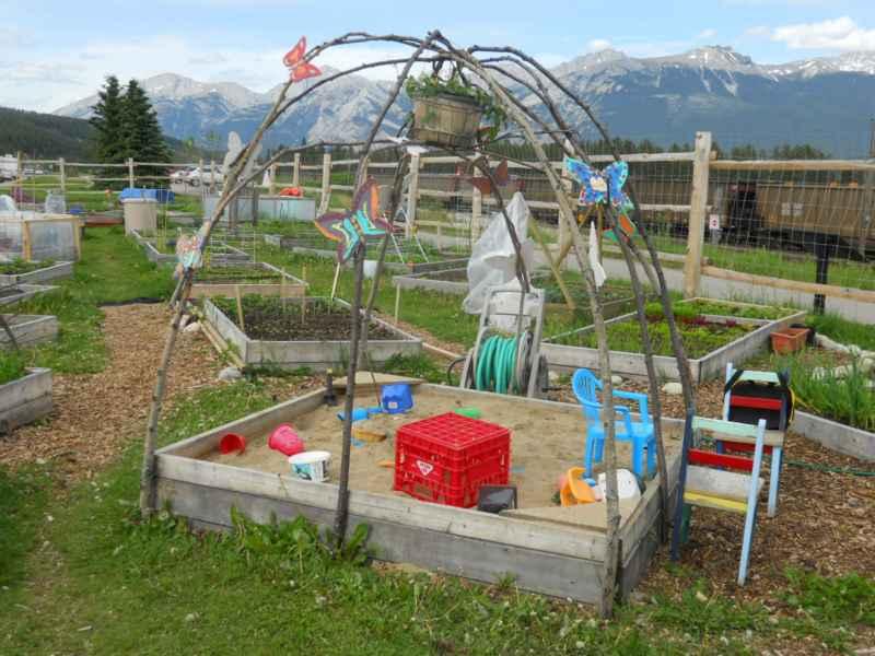 Jasper community garden Canada 8