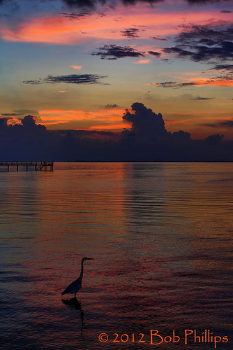 sunset gulfofmexico clouds florida greatblueheron pineisland bokeelia