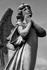 Angel #1 by PeteZab