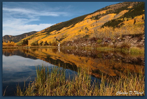 aspen colorado unitedstates usa canon 1div 2470mm explore me2youphotographylevel1 me2youphotographylevel2 me2youphotographylevel3 mygearandme mygearandmepremium me2youphotographylevel4 me 2 you photography landscape cityscape seascape scape landscapes 1d mark iv ef2470mm f28l usm ef2470mmf28lusm america northamerica eos1d eos1dmarkiv eos 4 mark4 co fall season autumn color highestposition352onsundayseptember232012 best wonderful perfect fabulous great photo pic picture image photograph esplora explored