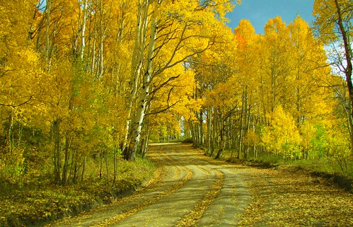 autumn rural colorado stormking dirtroad aspen montrosecolorado cimarronrange