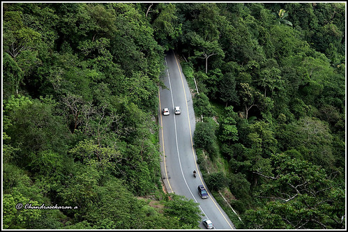 lakkidi viewpoint wayanad kerala india nature ghats road trees canoneos6dmarkii vaithri