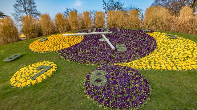 Geneva's flower clock