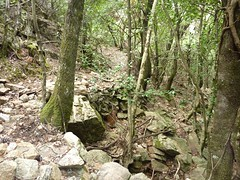 Le ruisseau avant le Valdu Grande : traversée de la 2ème branche du ruisseau