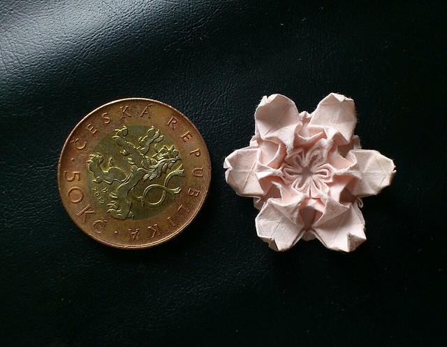 mini Wolfgang Flower