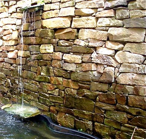 Merrily farms water