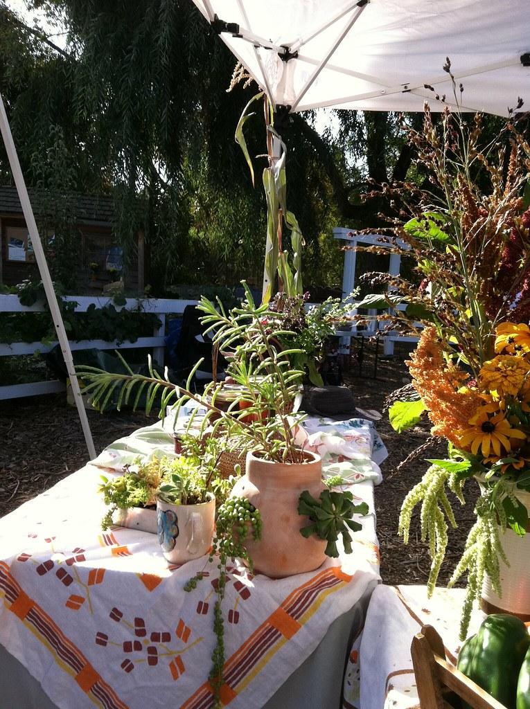Iphone pix oct 2012 251 master gardeners of santa clara - Master gardeners santa clara county ...
