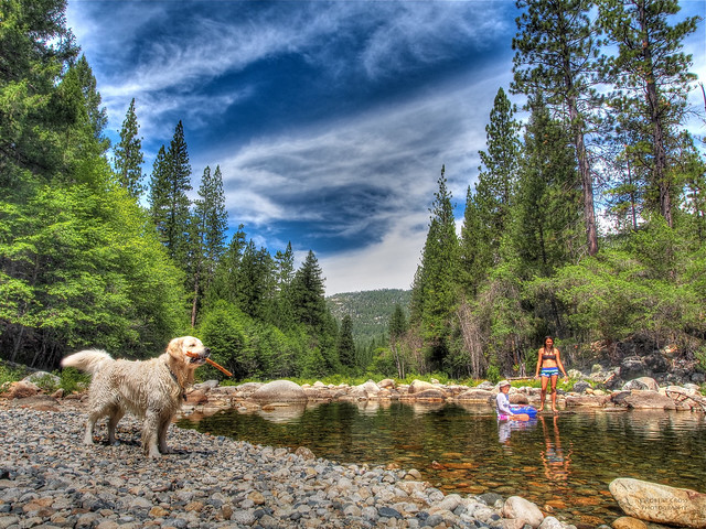 Summer day on the South Fork