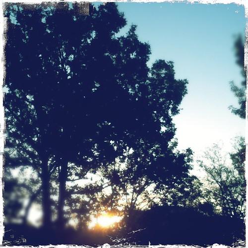 sunset noflash skywatch hipstamatic kodotxgrizzledfilm americanalens