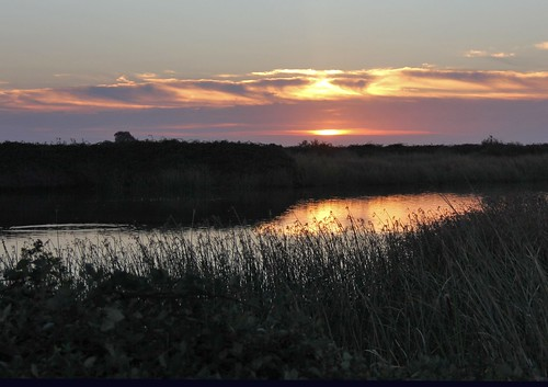 northerncalifornia sunrise wetlands slough equinox suisuncity solanocounty suisunmarsh