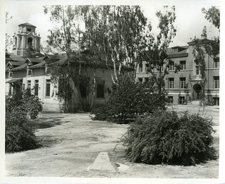 Harwood Hall of Botany in 1937, which was built in 1915 and demolished in 1968