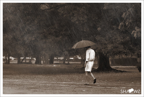 portrait rain umbrella canon walking is photo shadows play walk ii 7d l monday f28 ef 70200mm shdows soman intherain sarin shaodws മഴ wetrain rainwalk walkinginrain engandiyur ചിത്രം keralarain ii70200mm ഫോട്ടോ ചിത്രങ്ങള് nizhal പടം പടങ്ങള് നിഴല്കൂത്ത് മഴകാലം nizhalkoothu sarinsomancom സരിന് aloneinrain മഴയിലൂടെനനഞ്ഞ്നനഞ്ഞ് മഴയിലൂടെ rainingkerala