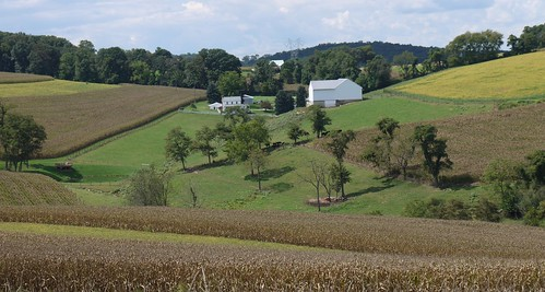 corn day cloudy pennsylvania farmland pasture maize soybeans yorkcounty airville
