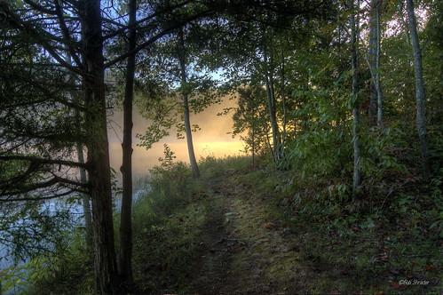 morning light mist lake tennessee montgomerybellstatepark creechhollow explore41510612