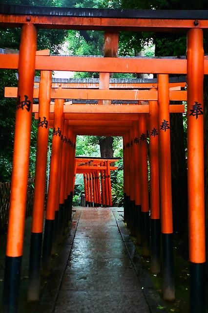 東京十日冒險王 Travel in Japan Day8-5